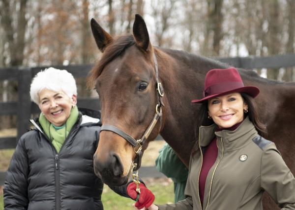 Lady Sheila Stable/Edition Farm